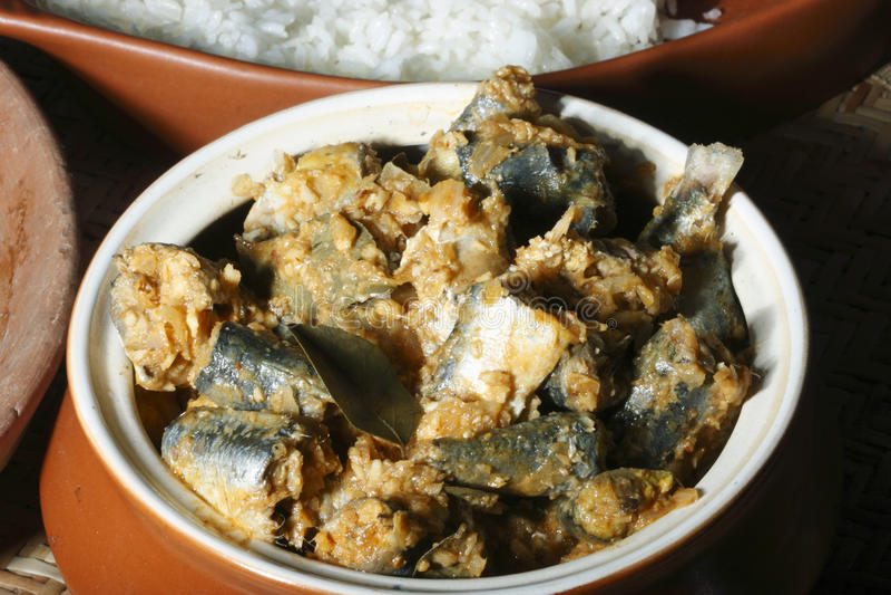 Cari du sud de poissons de style du Kerala photographie stock