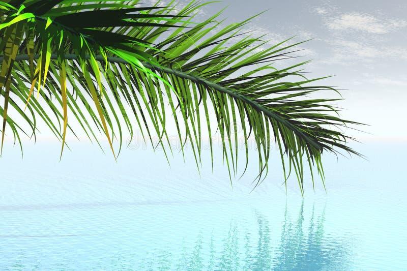 Download Caribbean stock illustration. Image of climate, effortless - 2963958