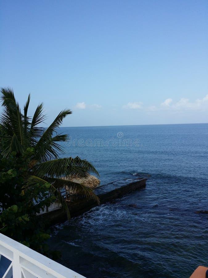 caribbean imagenes de archivo