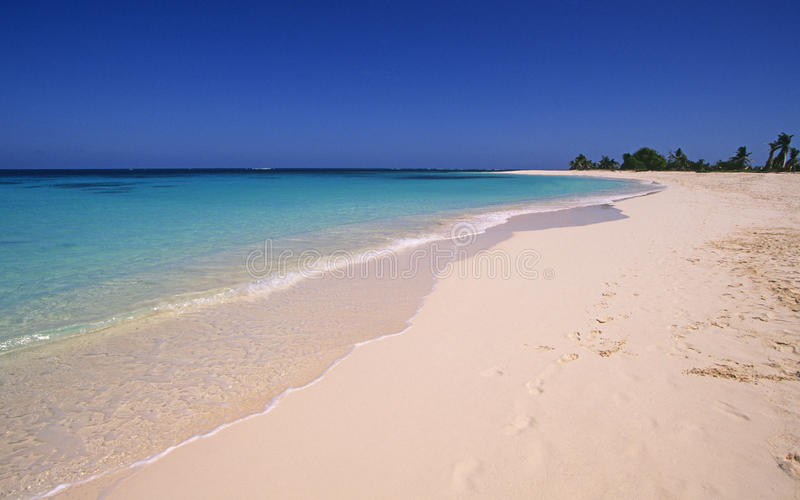 Download Caribbean beach stock photo. Image of island, tropical - 18566472