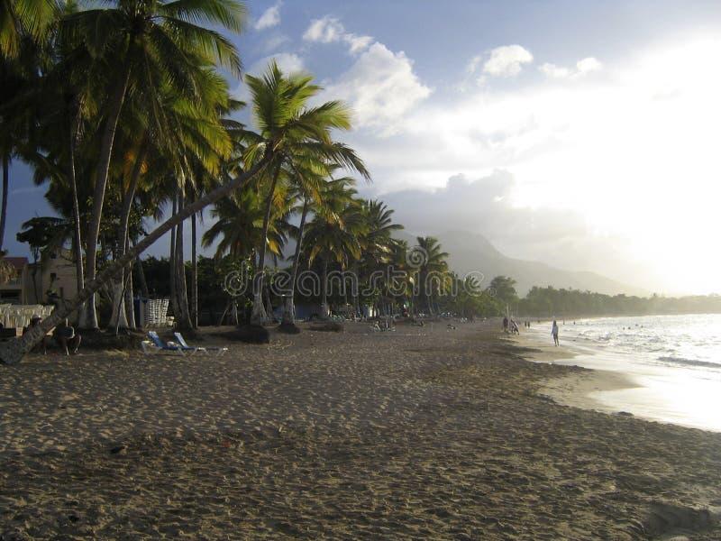 Download Caribbean Beach Stock Image - Image: 199491