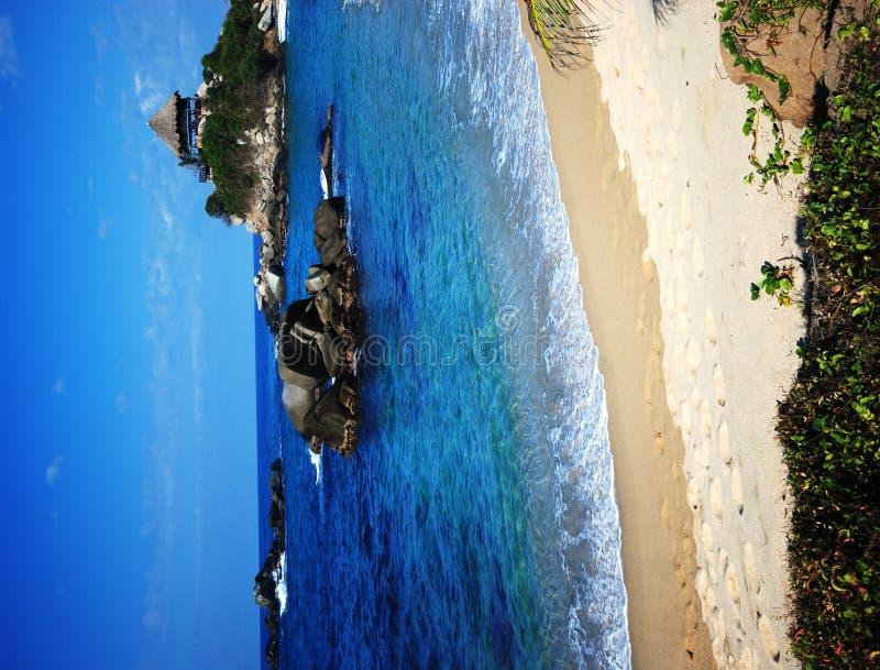 Caribbean beach. Tayrona national park in the Caribbean beach of Colombia royalty free stock photography