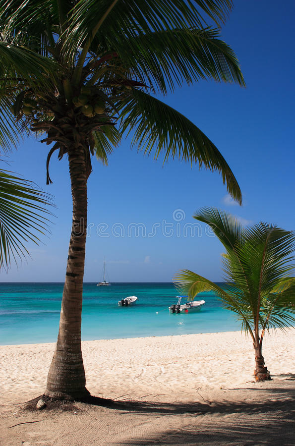 Download Caribbean Beach Stock Image - Image: 22884811