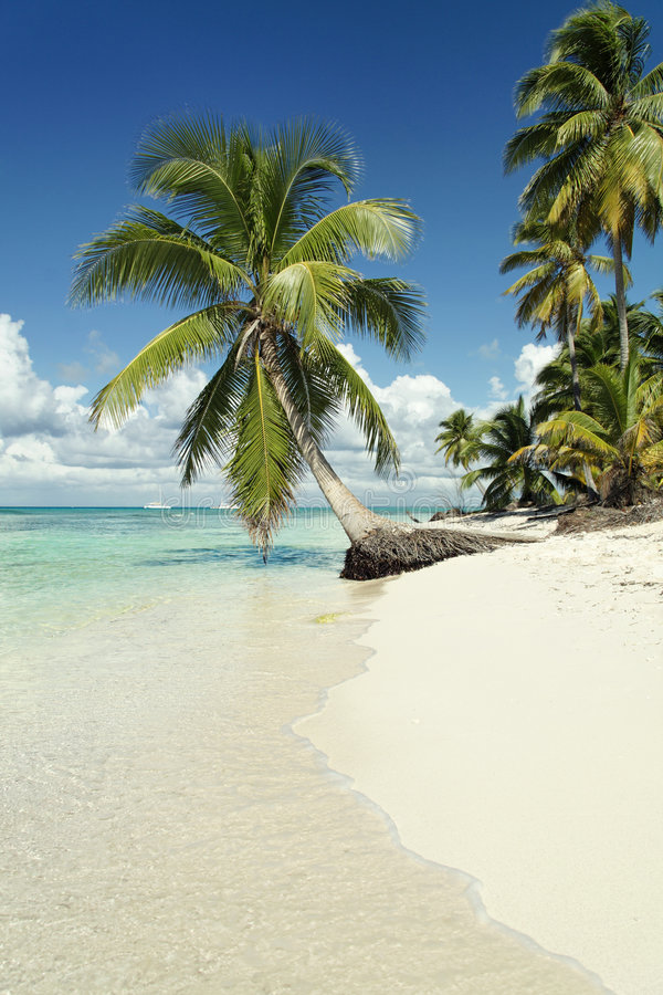 Caribbean beach. Shooted at wide angle stock photography