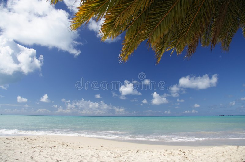 Download Caribbean Beach stock image. Image of grey, blue, island - 909705