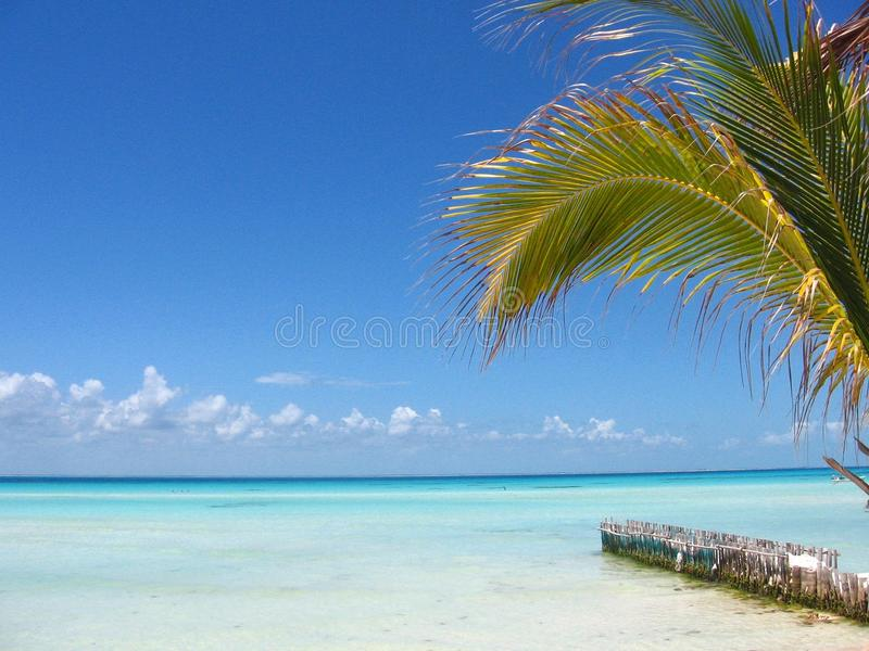 Caribbean beach stock images