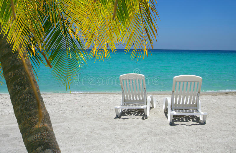 Download Caribbean Beach Chairs And Palm Stock Image - Image: 26437175
