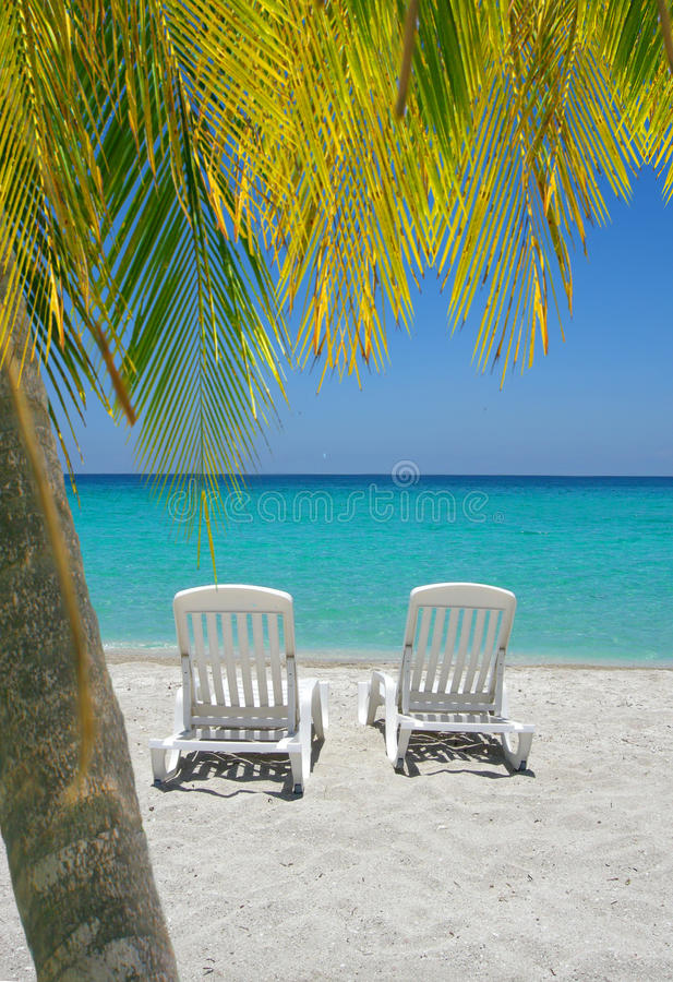 Download Caribbean Beach Chairs And Palm Stock Photo - Image: 26882440
