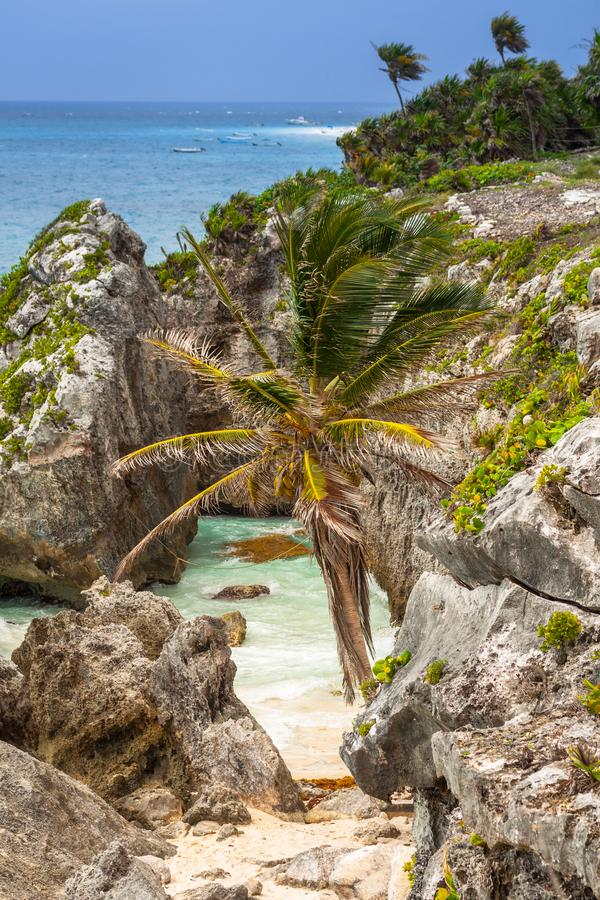 Caribbean beach at the cliff in Tulum. Mexico royalty free stock image