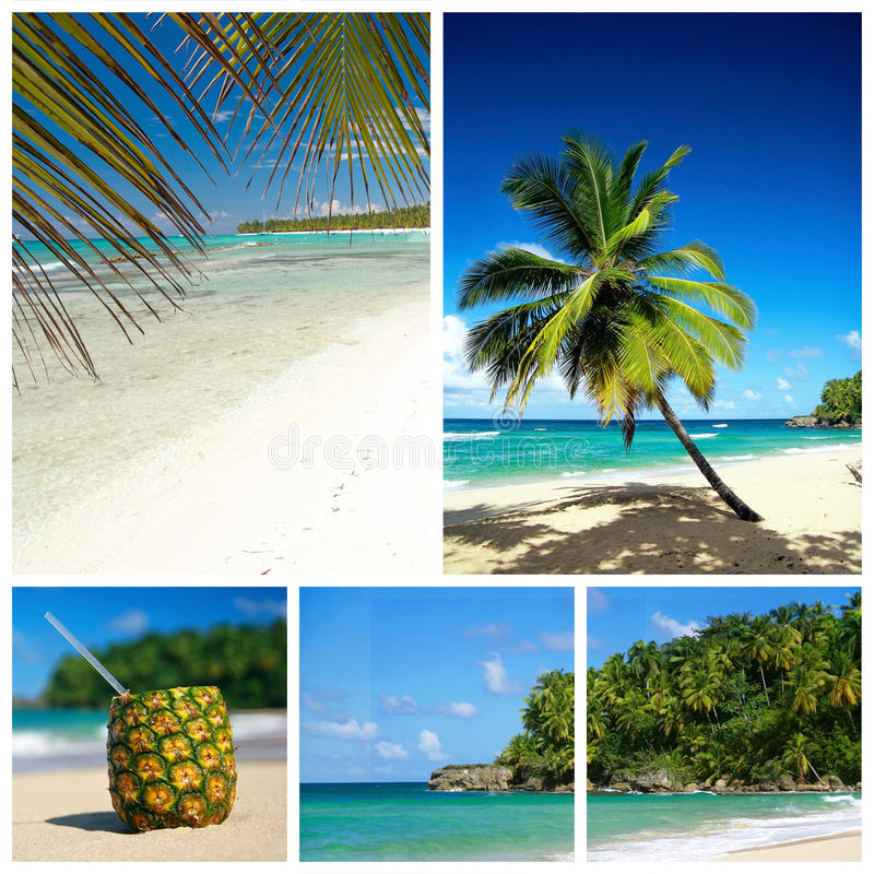 Caribbean beach collage. Beach with palm and and exotic coctail royalty free stock images
