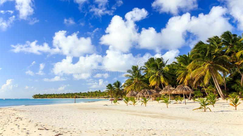 Caribbean beach in Dominican Republic royalty free stock photos