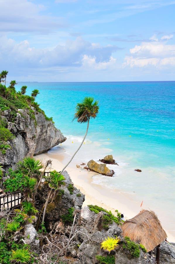 Caribbean Beach, Mexico. Caribbean beach on the shore of Tulum, Mexico royalty free stock photos
