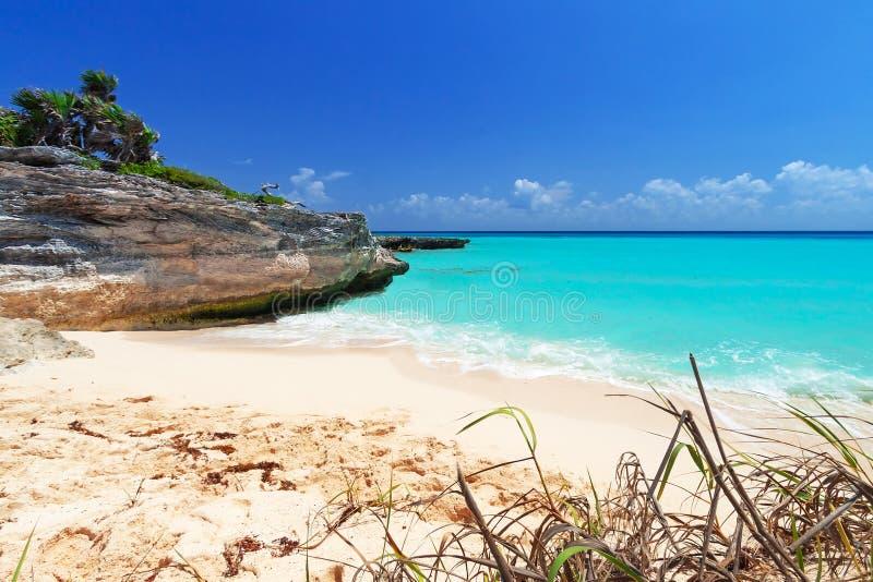 Caribbean beach in Playa del Carmen royalty free stock photography