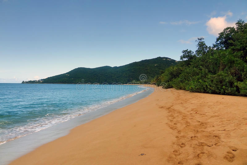 Download Caribbean beach scenery stock image. Image of cloud, france - 34401839