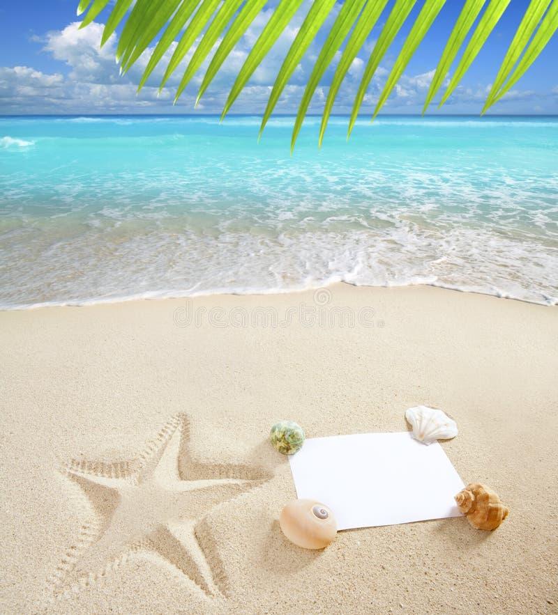 Caribbean beach with starfish shells royalty free stock photography