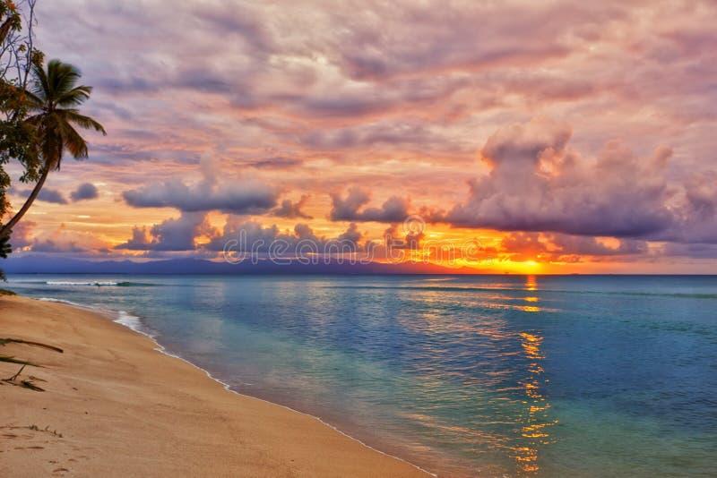 Caribbean beach sunset. Vibrant sunset at caribbean island beach stock image