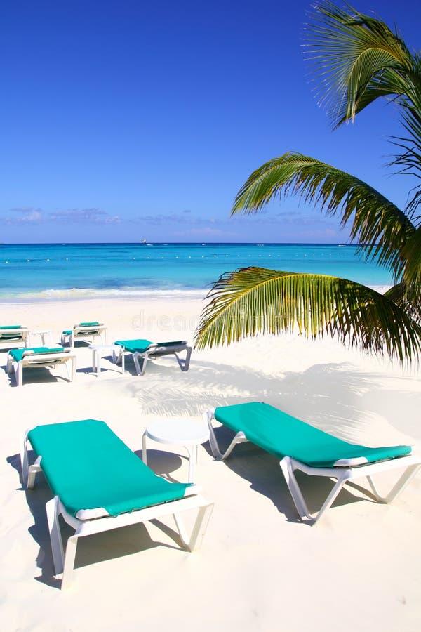 Download Caribbean Beach Turquoise Sea Green Hammocks Stock Photo - Image: 19292440