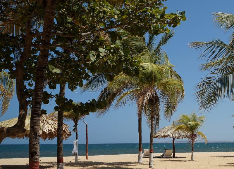 Caribbean beaches stock image