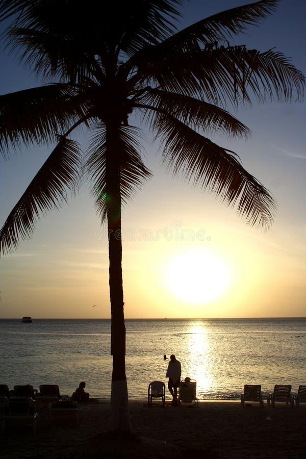Download Caribbean Island Beach Sunset Stock Image - Image: 1279945