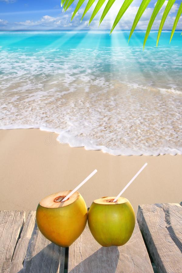 Download Caribbean Paradise Beach Coconuts Cocktail Stock Photo - Image: 19161396