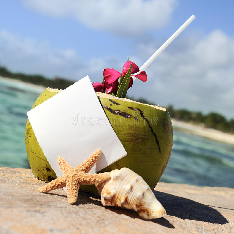 Download Caribbean Paradise Beach Coconuts Cocktail Stock Photo - Image: 23372134