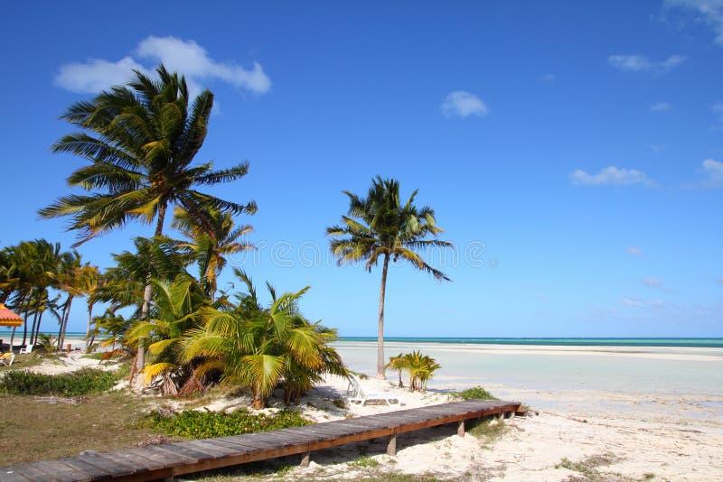 Caribbean Resort Stock Photography