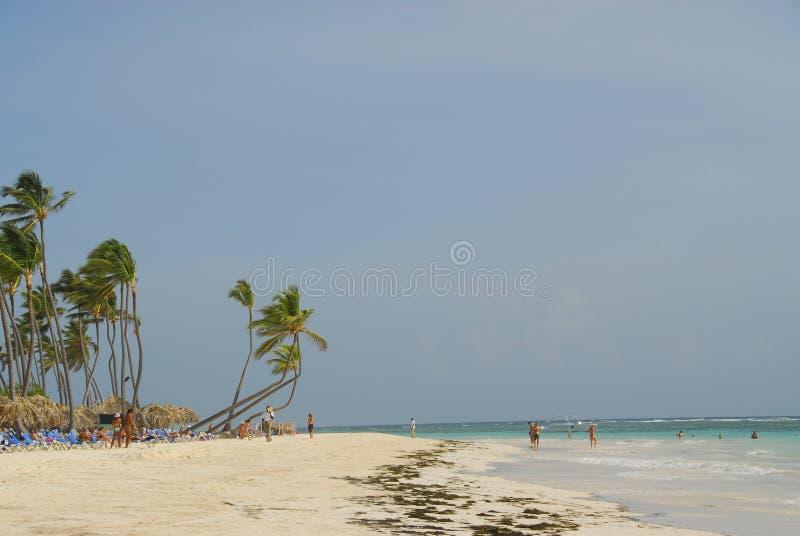Caribbean Resort beach royalty free stock image