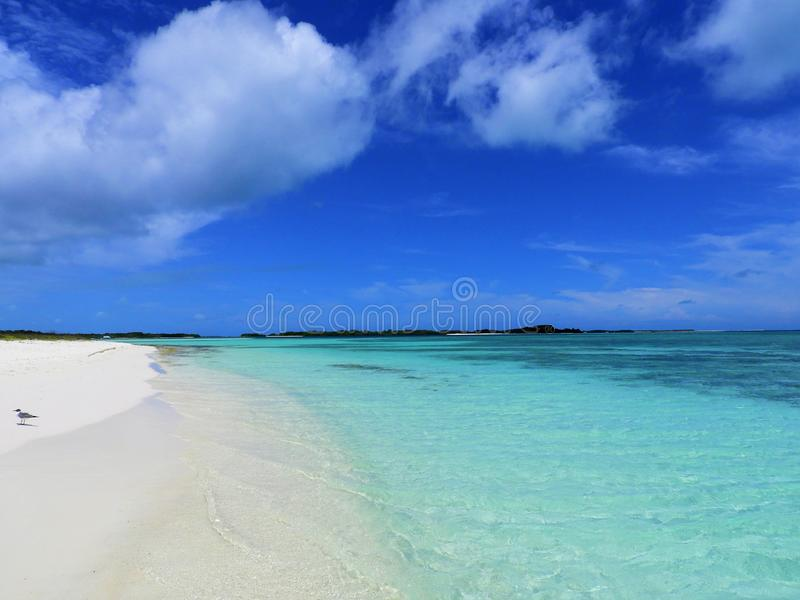 Caribbean sea, Los Roques. Vacation in the blue sea and deserted islands. stock photo