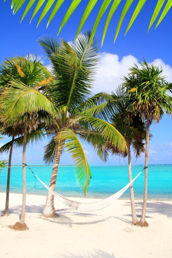 Caribbean sea with swing hammock turquoise beach royalty free stock photo
