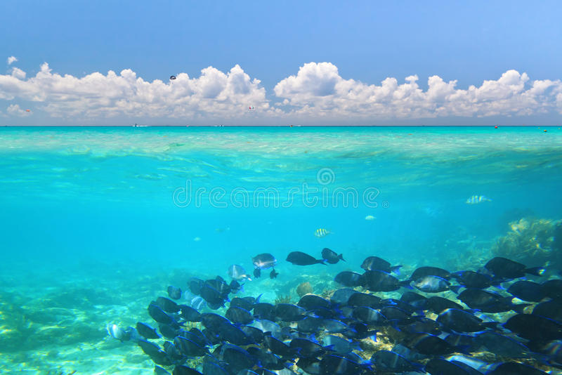 Download Caribbean Sea Under Blue Sky Royalty Free Stock Photography - Image: 21436187