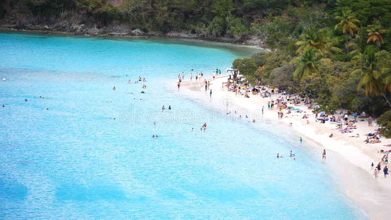 Caribbean Shore in USVI stock photo