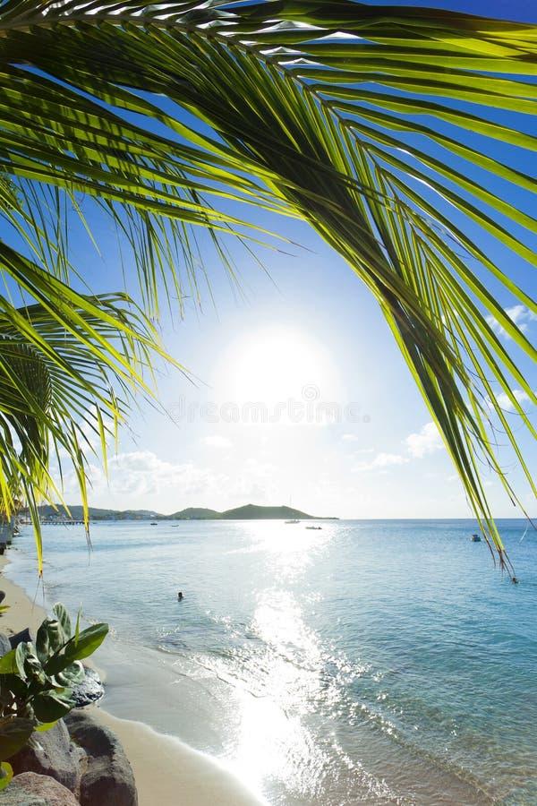 Caribbean - St Martin royalty free stock photo