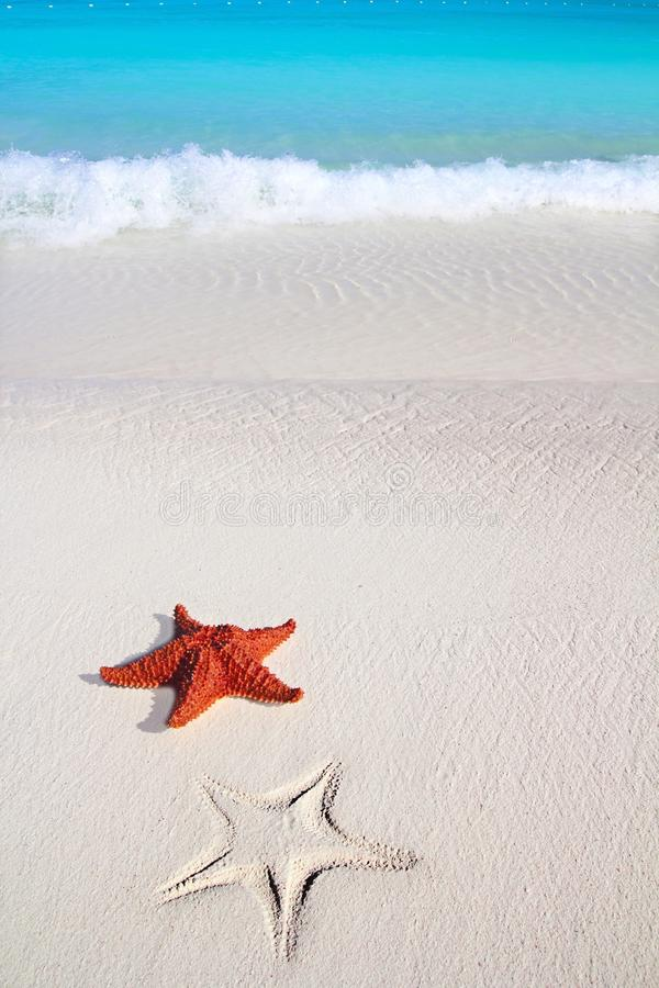 Download Caribbean Starfish Tropical Sand Turquoise Beach Stock Image - Image: 18389033