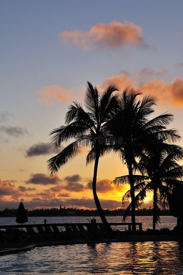 Caribbean sunrise and palm trees. Bahamas stock photo