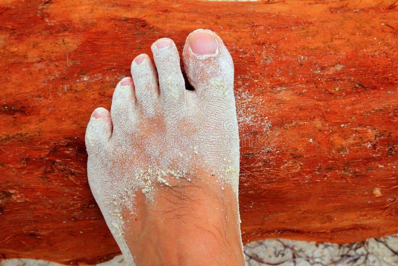 Caribbean white sand in man fee on wood
