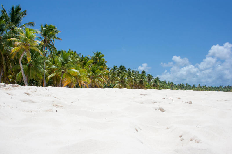 Caribe stockbilder