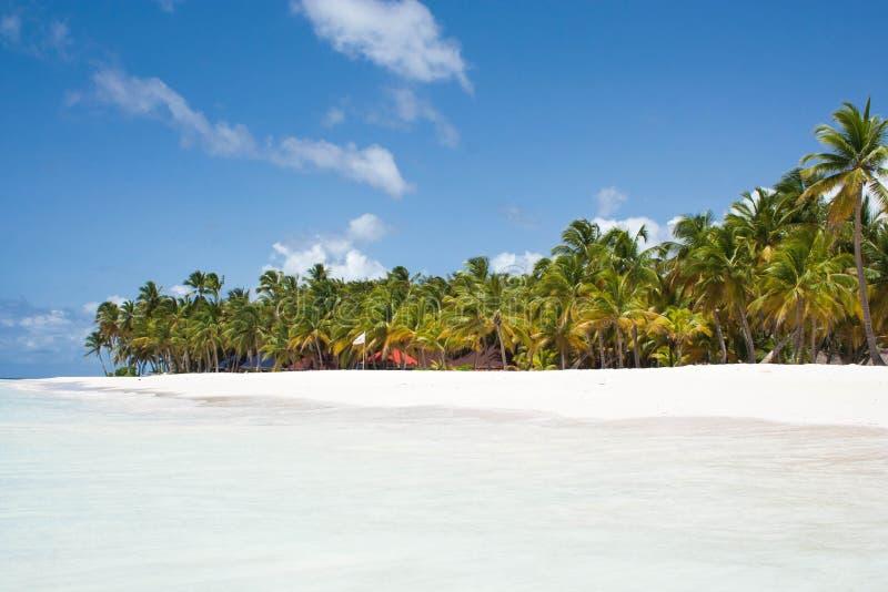 Caribe lizenzfreies stockbild