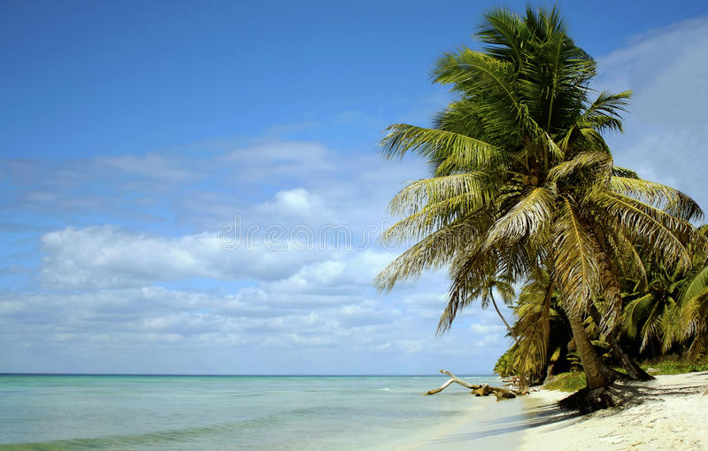 Caribean paradise royalty free stock image