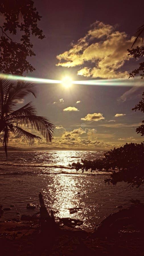 Caribean solnedgång arkivbilder