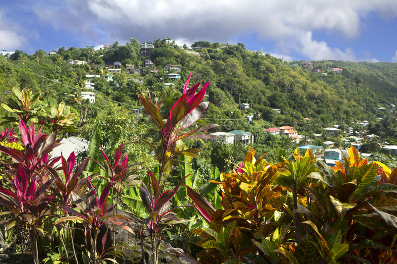 The Caribs. The Island Of Barbados. royalty free stock photo
