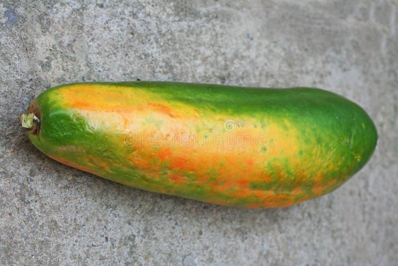 Carica Papaya Frucht stockbild