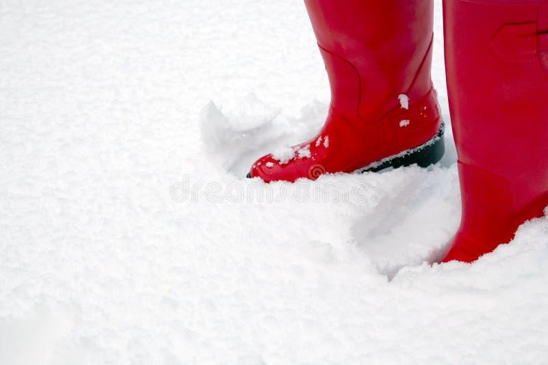 Caricamenti del sistema rossi di Wellington nella neve fotografia stock