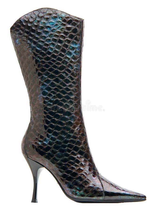 Caricamento del sistema high-heeled femminile nero isolato con il percorso immagine stock libera da diritti