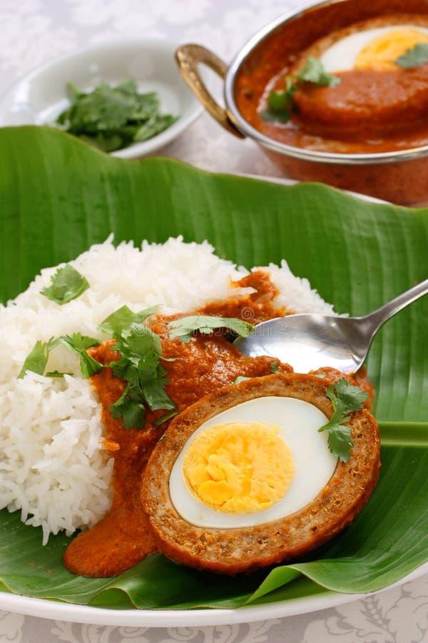 Caril do kofta de Nargisi e arroz, culinária indiana foto de stock