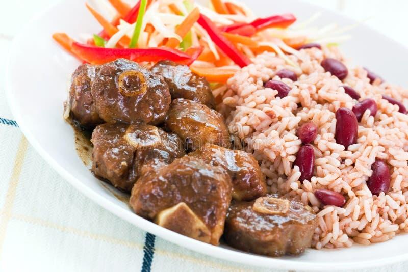 Caril do rabo de boi com arroz imagens de stock