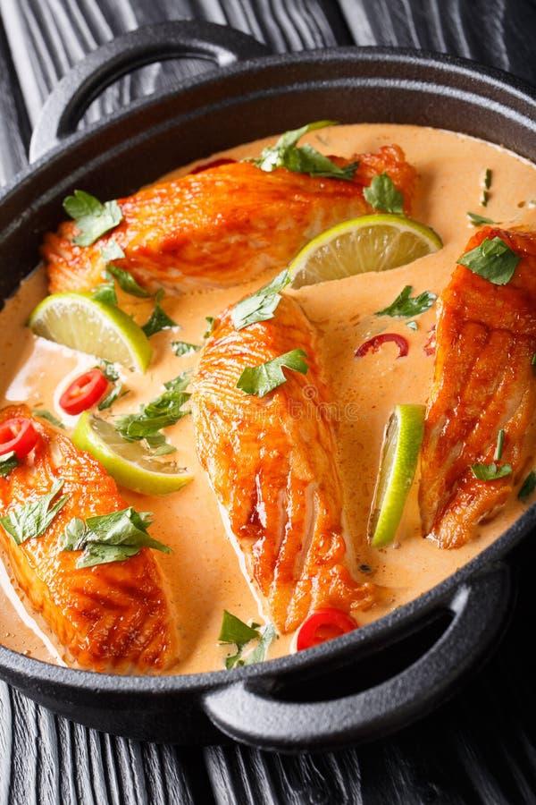 Caril picante tailand?s do coco com close-up dos salm?es em uma frigideira vertical imagem de stock