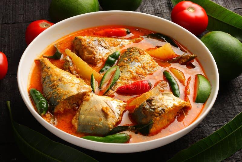 Caril tradicional dos peixes de Kerala foto de stock