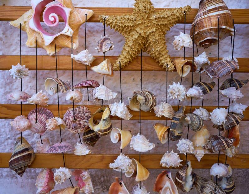 carillón de viento móvil de la concha marina que cuelga México fotos de archivo libres de regalías
