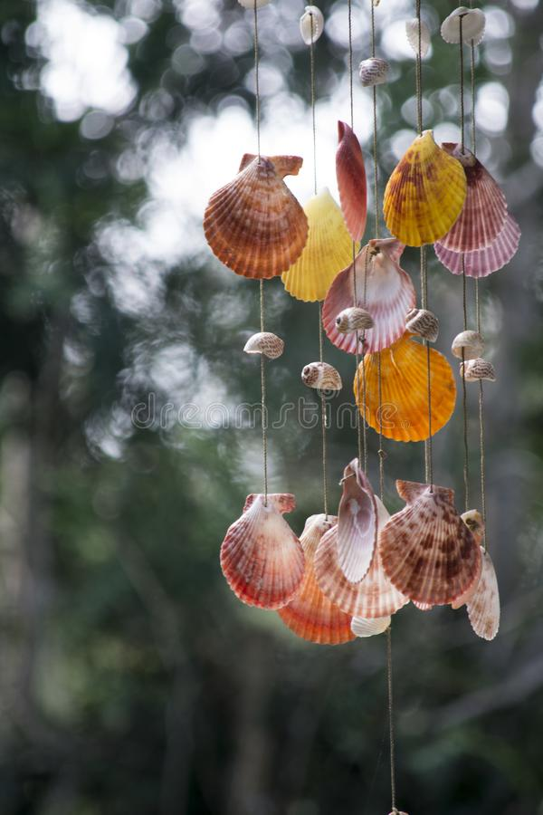 Carillones de la cáscara del mar foto de archivo libre de regalías