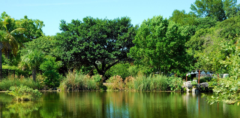 Carillons par le lac photo libre de droits